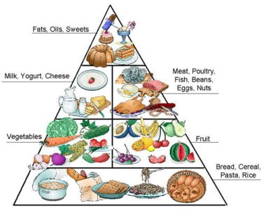 diabetes diet exchange:
